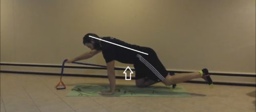 Exercise 101: Bird Dog Advanced Progression
